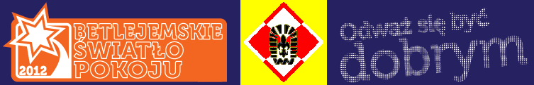 news: 121216_bsp_logo2b.PNG